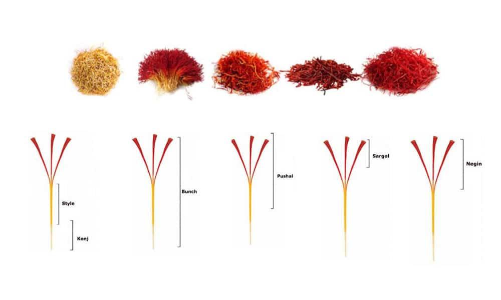 saffron types